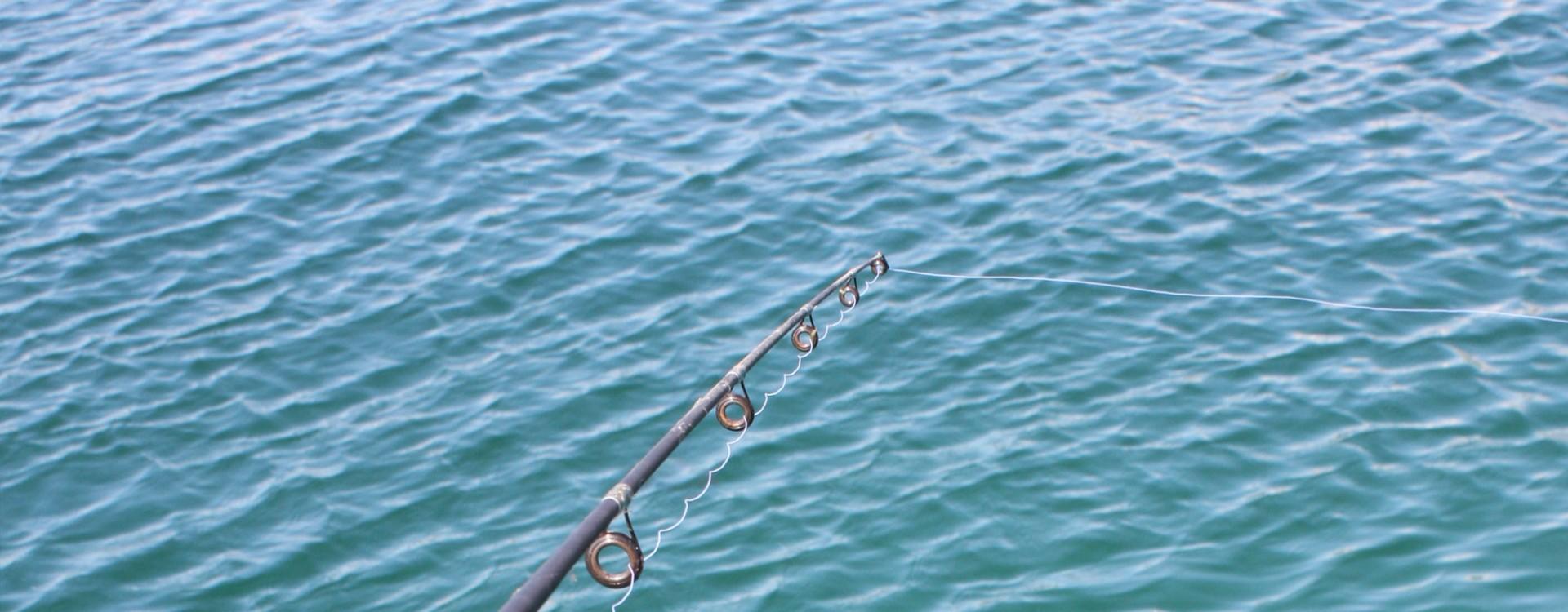 Fisch Glück